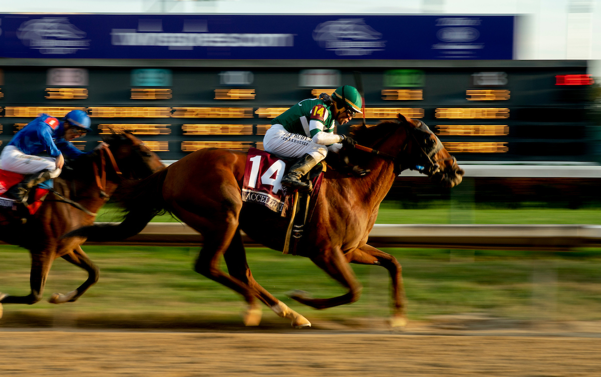Breeders Cup 2018 Recap Longshots Highlights Amp Cashes