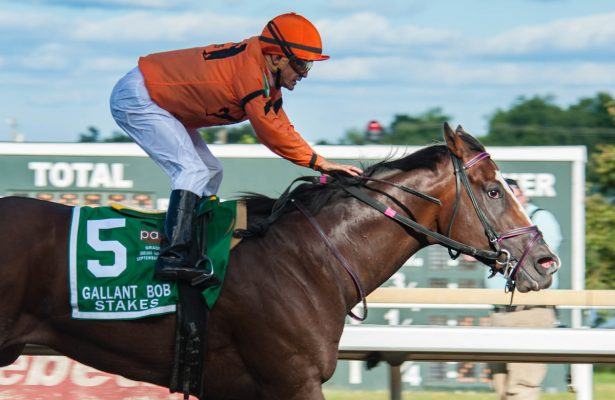 BENSALEM, PA - SEPTEMBER 24: Noholdingback Bear wins the Gallant Bob S. on PA Derby day at Parx Racecourse in Bensalem, PA. (Photo by Sophie Shore/Eclipse Sportswire/Getty Images)