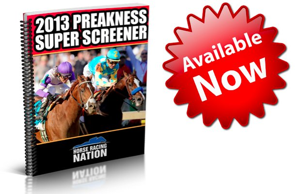 Preakness 2013 Picks